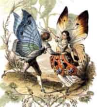 В христианстве стадии развития бабочки олицетворяют жизнь, смерть и воскресение, поэтому бабочка иногда изображается...